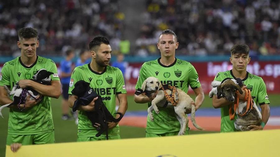 Игроки бухарестского «Динамо» провели акцию в поддержку бездомных животных. Они вышли на поле с собаками, чтобы найти им дом