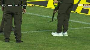 Во время футбольного матча на поле выползла змея