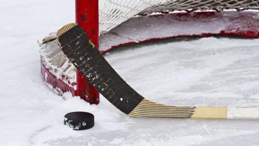 Второе поражение украинских хоккеистов на турнире «Beat COVID-19 Ice Hockey»